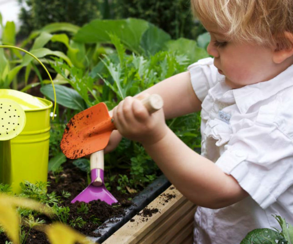 Mini ogródek dla dziecka